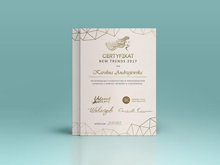 walczak-orange-lion-design-studio-wroclaw-projektowanie-stron-internetowych-grafika-fotografia-certyfikat