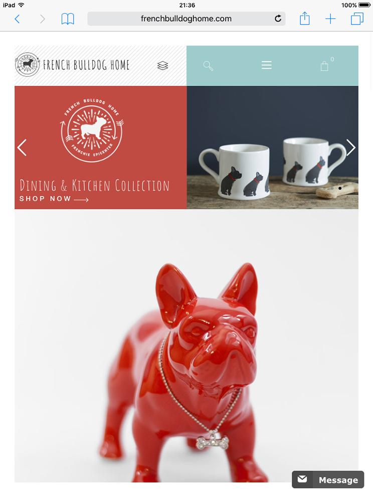french-bulldog-orange-lion-design-studio-wroclaw-projektowanie-stron-internetowych-grafika-fotografia-5
