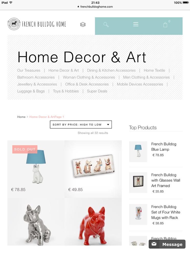 french-bulldog-orange-lion-design-studio-wroclaw-projektowanie-stron-internetowych-grafika-fotografia-7